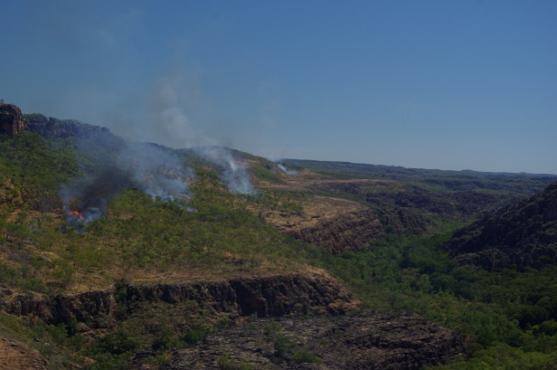 Prescribed burning being carried out using aerial incendiaries, fired from a helicopter, on the Arnhem Plateau in Kakadu National Park, northern Australia. (Photo: Clay Trauernicht)