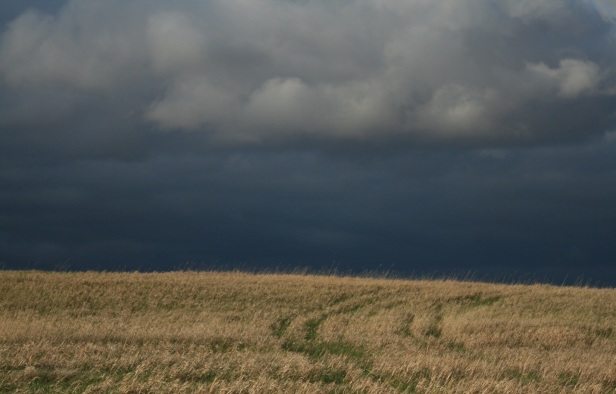 A storm approaching over a hay field (Photo credit: R. Fisher).
