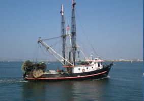 bottom-trawl survey vessel