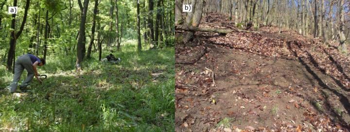 oak-forest-community
