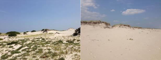 dunes-one