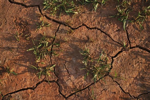 Soil degradation (Copyright free)