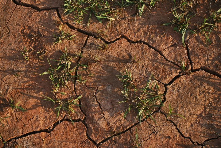 Soil degradation (Copyright free)