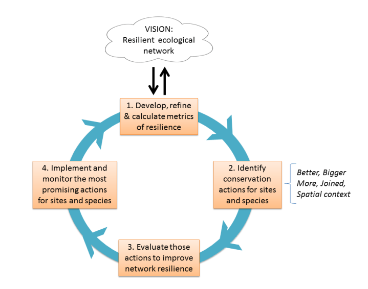 Isaac et al - Adaptive Management Cycle for implementing a resilient ecological network