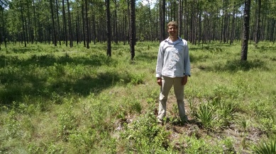 Lars Brudvig during fieldwork in the beautiful (and super-diverse) longleaf pine savannas, looking at factors limiting plant community recovery during restoration.