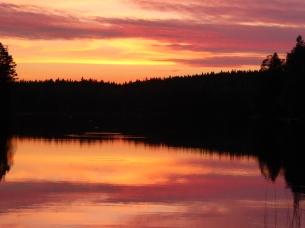 """Manuela Gonzalez-Suarez spent a post-ECCB conference weekend at a lake cottage near Kattila, Finland -""""just gorgeous!"""""""
