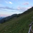 Meredith Root-Bernstein was at an art-science fieldwork/ workshop trip in the Piemonte pre-Alps near Biella (Oasi Zegna).