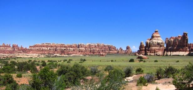 Grassland - Canyonlands National Park