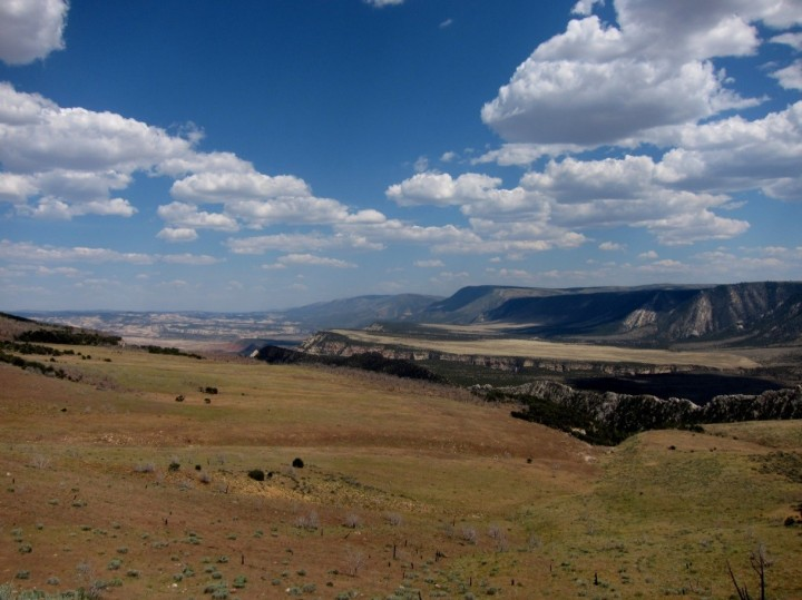 Grasslands and pinyon juniper forests - Dinosaur National Park