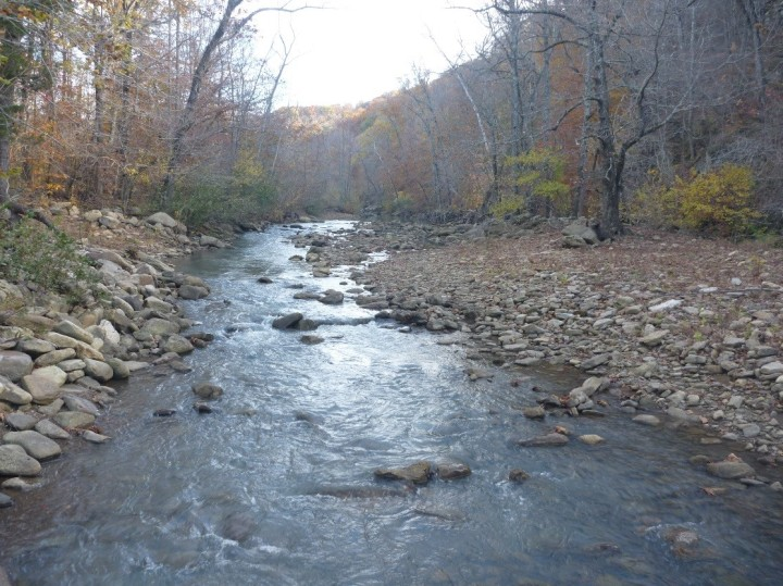 Little Mulberry Creek - Dan Magoulick, Arkansas Cooperative Fish and Wildlife Research Unit