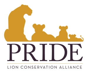 PRIDE_Logo_Color_Primary