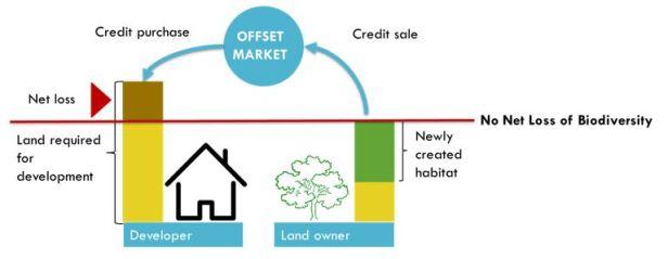 Offset market image