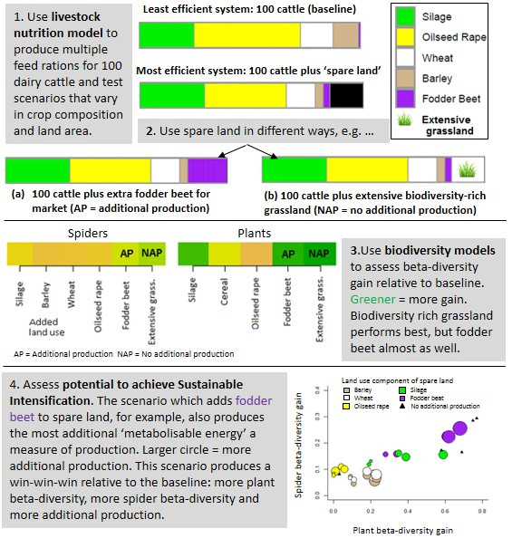 Sustainable intensification infographic