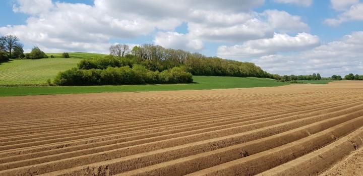 Semi-natural land cover_JonathanLenoir